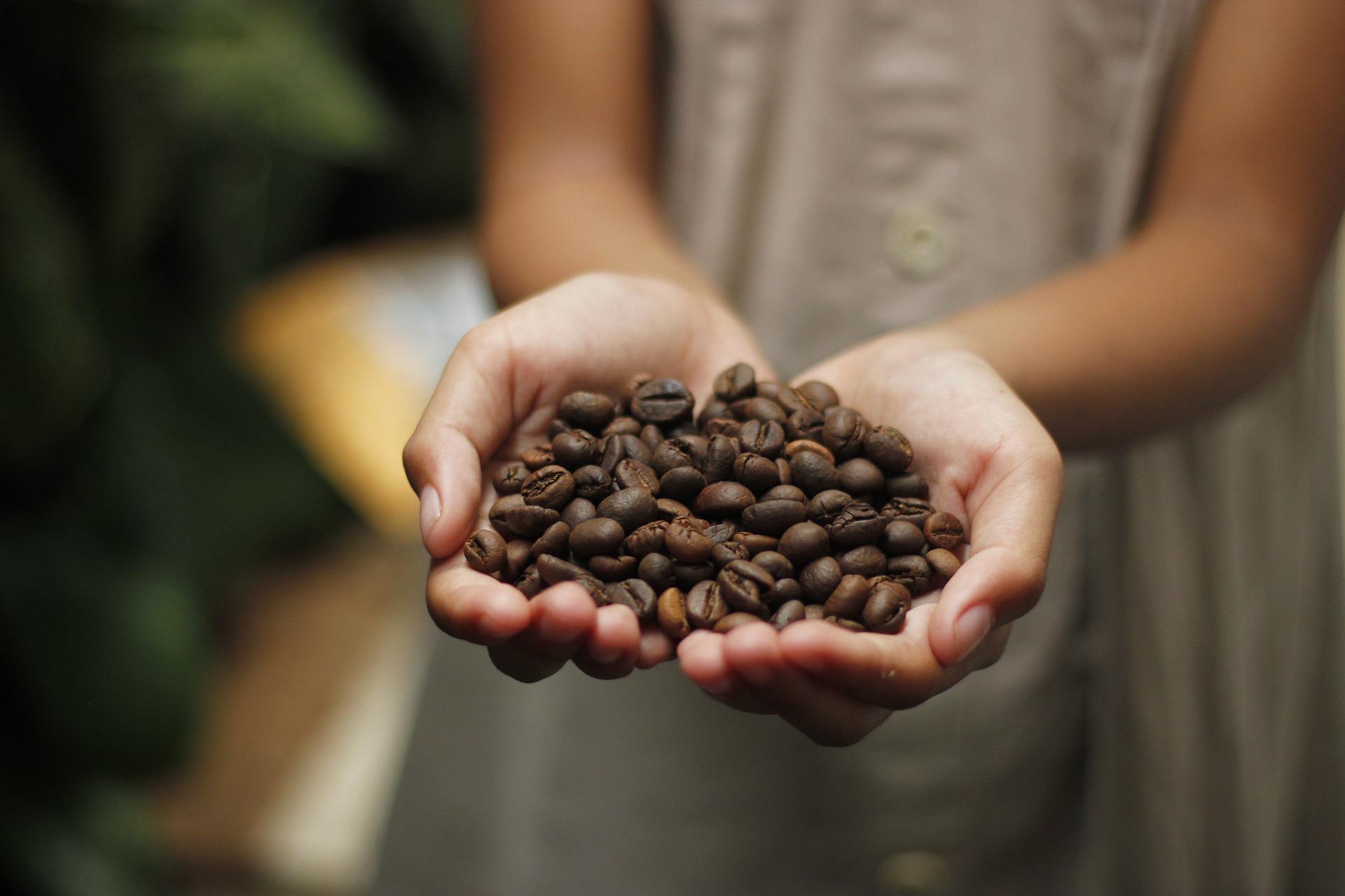 Le Café, boisson santé ou poison ?